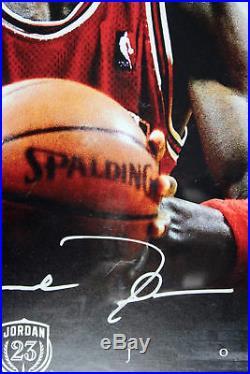 Bulls Michael Jordan Signed Framed 17.5x35.5 Photo LE #97/123 Fanatics & UDA