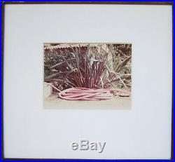DAVID HOCKNEY Signed 1973 Original Color Photograph Pink Hose
