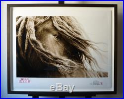 I AM Wild Horses of Sable Island by Roberto Dutesco