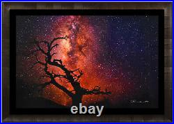 Peter Lik 1M Tree Of The Universe Silver Fuji Photograph Hand Signed COA Artwork