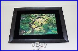 Peter Lik Inner Peace Limitied Edition Photograph 905/950 Signed Framed COA