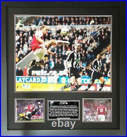 Rare Framed Dennis Bergkamp Signed Arsenal Football16x20 Photograph Coa & Proof