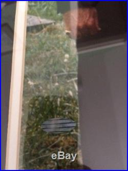 THE SOPRANOS SIGNED+FRAMED 16x20 PHOTO STEINER GANDOLFINI+SIRICO+VAN ZANT+2