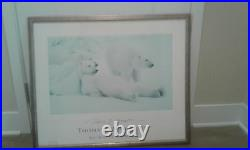 Thomas D Mangelsen Bad Boys of the Arctic SIGNED framed picture
