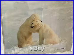 Thomas Mangelsen Polar Bear Hug -Signed/Framed by Gallery SOLD OUT