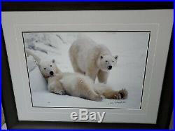Thomas Mangelsen Polar Bear LAZY BOYS Limited Edition Photo Print 1405/3500
