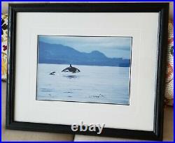 Thomas Mangelsen Signed Ocean Travelers Orca Print Photo Frame Limited