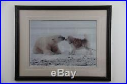 Thomas Mangelsen, signed, sold out, limited edition print Polar Kiss